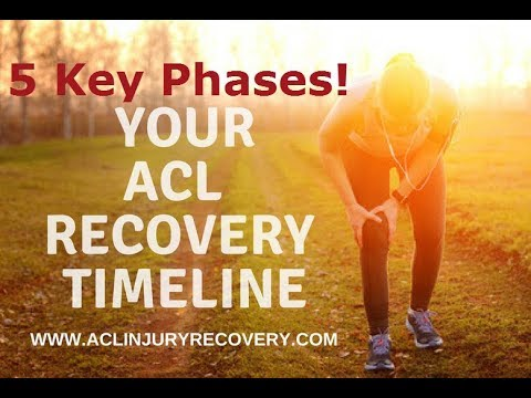5 Key ACL Recovery Timeline Phases for Sports Athletes