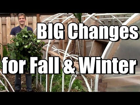 Big Changes in the Garden for Fall & Winter! 🍂🍂❄️❄️