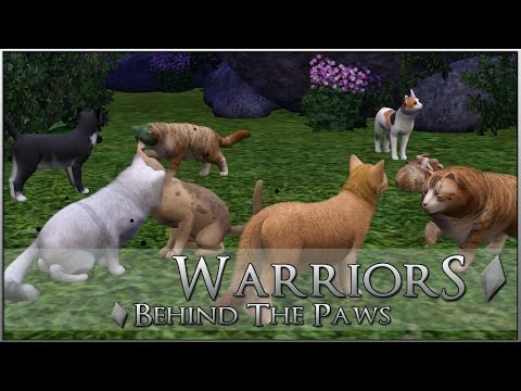 How To Have More Than Six Pets || Warrior Cats: Behind-the-Paws Series