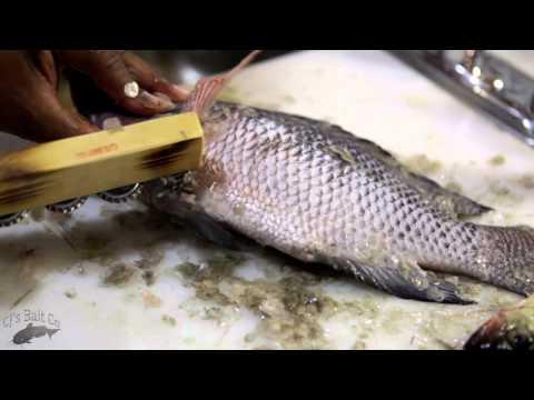 CJ's Ultimate Fish Scaler