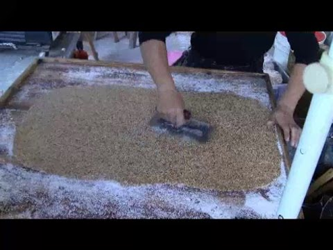 Sesame Peanut Candy Cracker  (Chinese Street Food)  China Fast Food