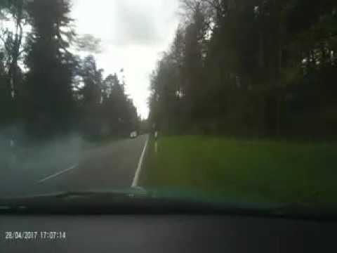 Beinahe Rehunfall, Tier hat überlebt. Reh erst auf Motorhaube vom entgegenkommen Fahrzeug.