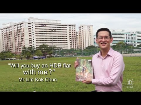 Will you buy an HDB flat with me?