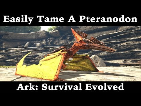 Easiest Way To Tame A Pteranodon - Ark: Survival Evolved