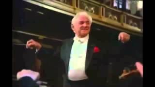 Mozart     Symphony No  25  K183     1 Mov      Bernstein