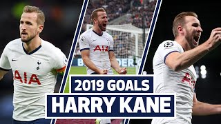 ALL OF HARRY KANE'S 2019 SPURS GOALS!
