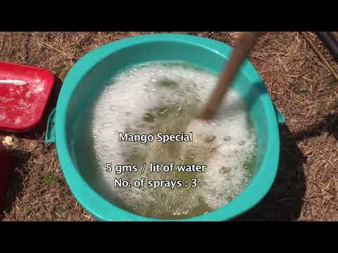 Mango Production Technologies of ICAR-IIHR Bangaluru.