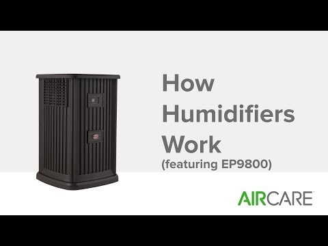 How Humidifiers Work (featuring EP9800)