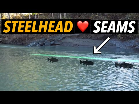 The Ultimate Guide to Steelhead Bank Fishing –Seams