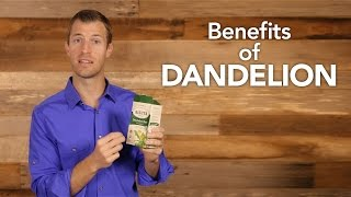 www.draxe.com  Dandelion is one of nature's top healing foods to help boost antioxidants, cleanse the liver and lose weight.   Benefits of Dandelion Include:  1) Diuretic     •    High in potassium, calcium and vitamin k     •    Potassium helps decrease fluid retention that leads to weight gain      •    Helps with cellulite from fluid retention     •    Relief from chronic constipation  2) Liver Detoxification     •    Support the liver which supports fat digestion     •    Rosacea or Gallbladder issues are warning signs of not digesting fats well     ⁃                    Top 2 herbs for liver detoxification are: milk thistle and dandelion   3) Heavy Metal Detoxification     •    Liver support will also help detox metals     •    Aids support of Type 2 Diabetes by balancing blood sugar naturally  4) Supports Treating Candida   How to Use:     •    Supplement form- 2 times daily     •    Tea form- One cup 1-2 times daily  Additional articles and recipes: http://draxe.com/dandelion-tea/