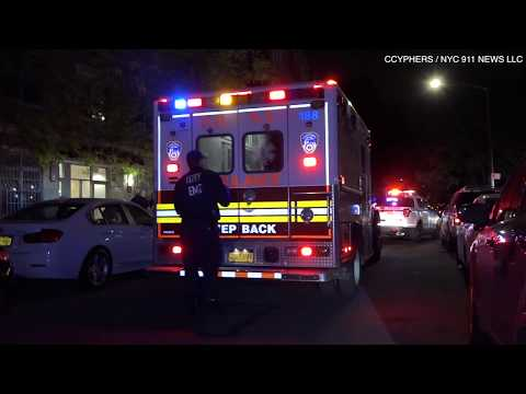 Burglar gets finger bitten off in Harlem - CCyphers