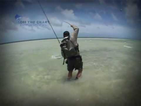 Bonefish: Fly Fishing the Flats: Seychelles