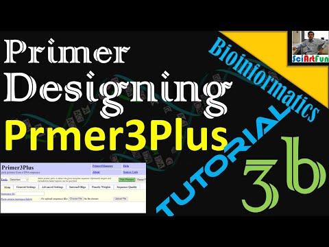 Primer Designing Using Primer3Plus