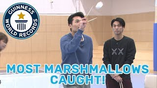 Most marshmallows caught with chopsticks in one minute - Guinness World Records
