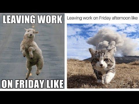 Leaving Work On Friday Meme