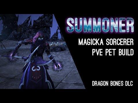 Magicka Sorcerer Pet Build