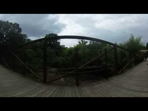 DC 360: Elephant Bridge at Smithsonian's National Zoo