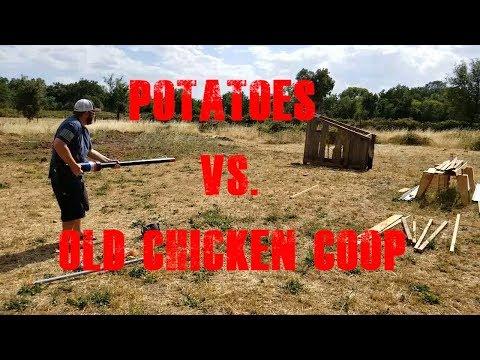 Potaoes Vs  Chicken Coop