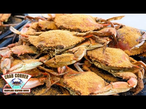 How To Crack a Crab THE RIGHT WAY | Crab Corner