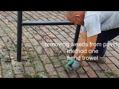 3 ways of cleaning weeds from paving cracks