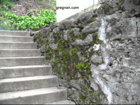 Moss Growing On Rock Retaining Wall - Building Maintenance