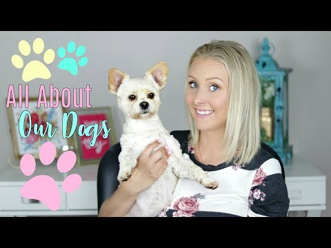 Do My Dogs Sleep With Me- What Kind of Food They Eat- New Puppy