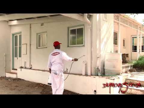 Removing Algae and Mildew from walls NEW
