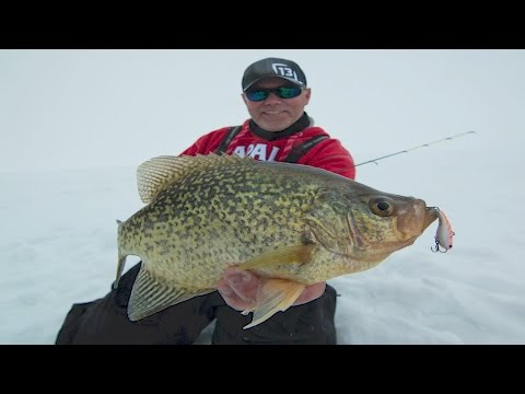 Target Giant Crappie With Lipless Crankbaits