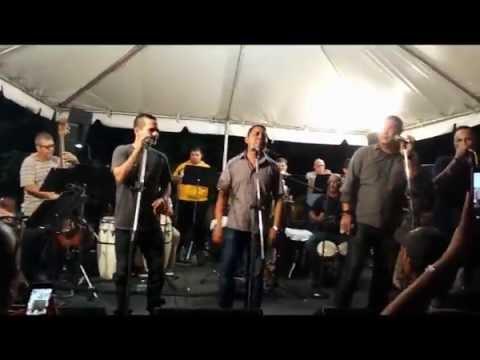 Luis Gonzalez El Tsunami De La Salsa, Jose Jomar Y Orquesta, Willie Rosario Y Su Orquesta