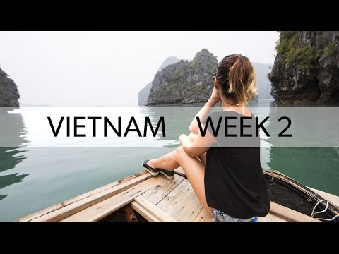 Hoi An & Halong Bay   VIETNAM WEEK TWO