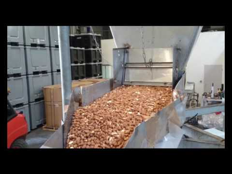 Almond Pasteurization