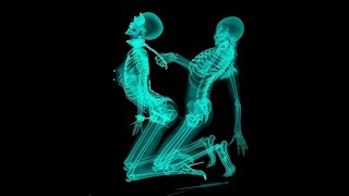 Top 30 Strangest Things Found in an X-Ray I Crazy photos