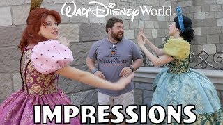 Download I Scared Cinderella's Step Sisters! Disney World Impressions Video