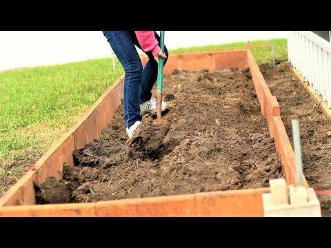 三天开垦一个新菜园,兔妈一一解答的常见的问题
