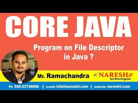 Core Java Tutorial | Program on File Descriptor in Java ? | By Mr.Ramchander