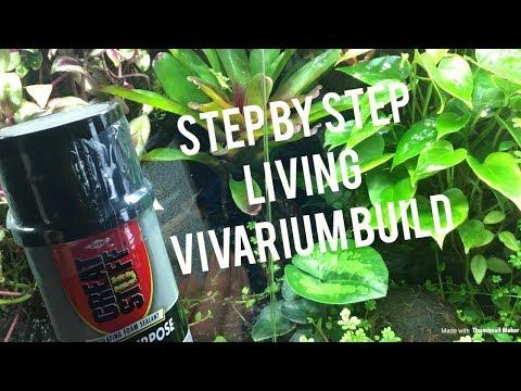 Reptile Vivarium Build |STEP BY STEP