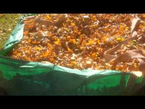 leaf collection tip