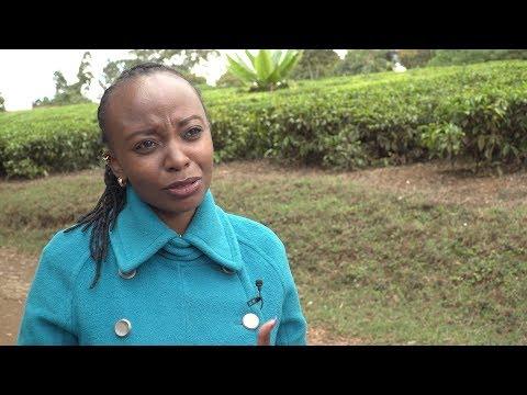 Women in Innovation and Creativity: Faith Maluki, Kenyan Plant Breeder