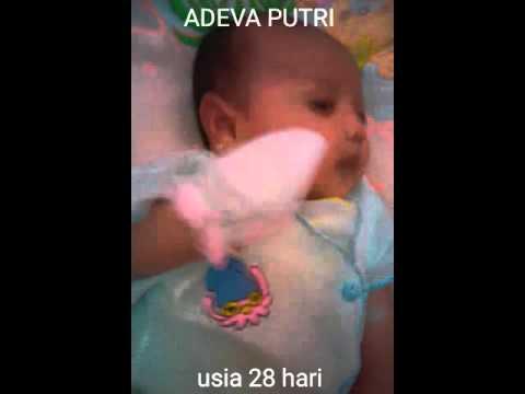 Adeva putri bayi menyenangkan