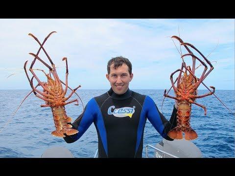 Diving for Jumbo Crays   Perth WA