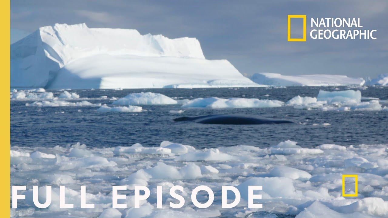 Storming Antarctica (Full Episode) | Continent 7: Antarctica