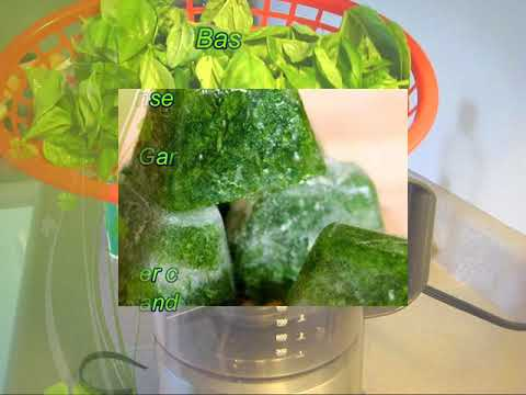 How to Preserve Basil and coriander In Ice Cube Trays/ Conservation de coriandre et basilic?