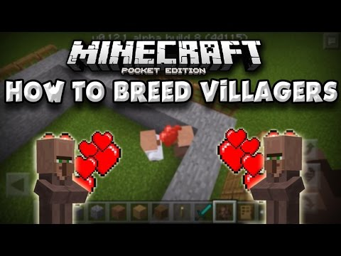 How To Breed Villagers in Minecraft PE [Pocket Edition]