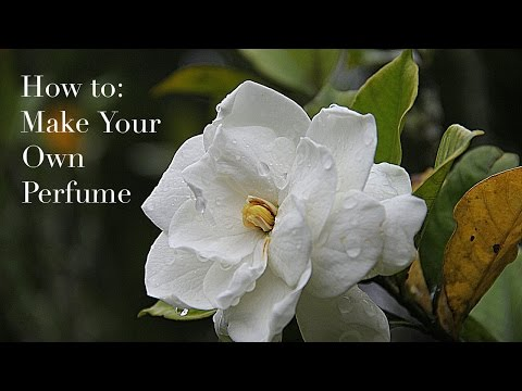 How to: Make Your Own Perfume