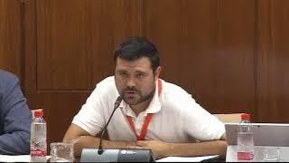 Comisión de Infancia en el Parlamento de Andalucía