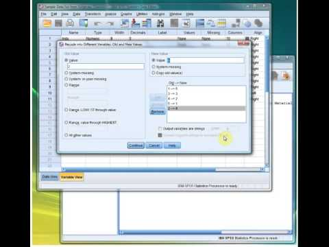 SPSS   Recoding Into a New Variable