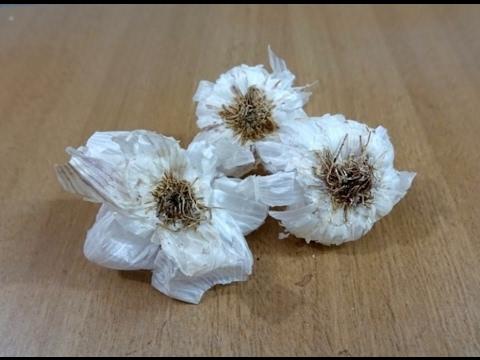 Flower Making With Garlic !! Garlic Flower Making Tutorial / Dry Flower / Instructions .....