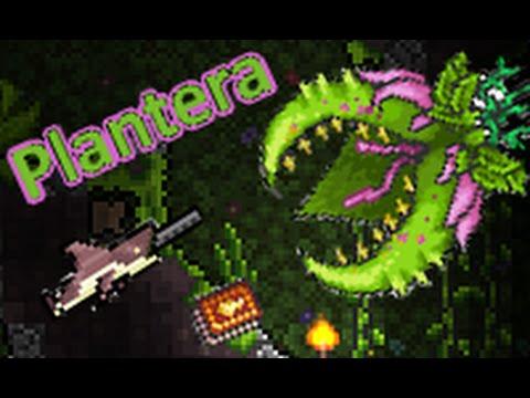 Terraria : How summon and kill Plantera