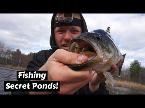 Catching BIG Bass in a HIDDEN Pond! (Kayak Fshing)