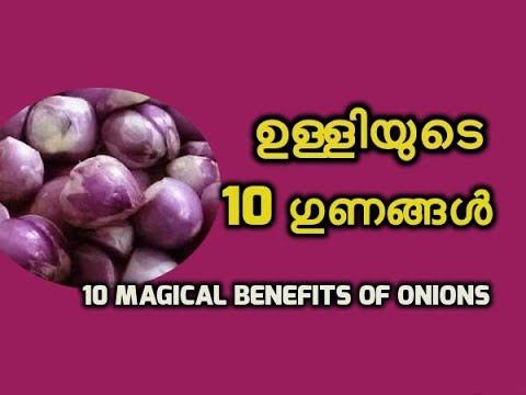ദിവസവും ചെറിയ ഉള്ളി കഴിച്ചാൽ 10 ഗുണങ്ങൾ Benefits of Small Onions